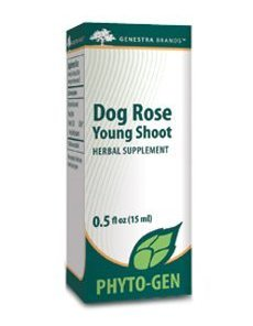 Dog Rose Young Shoot by Genestra