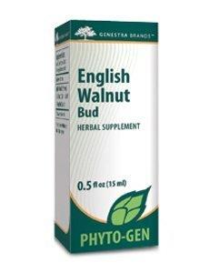 English Walnut Bud by Genestra