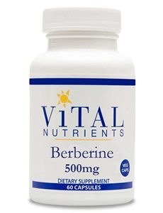 Berberine 500 mg by Vital Nutrients