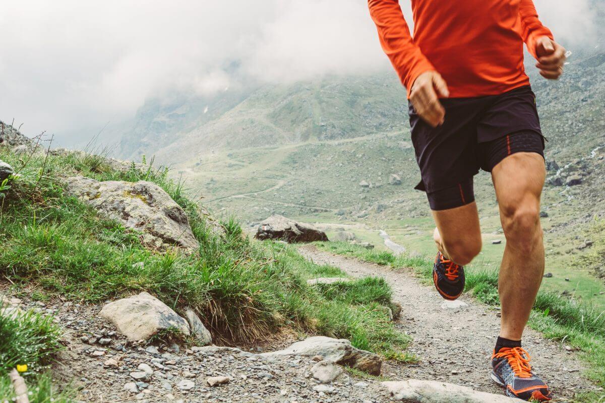 L Carnitine for endurance